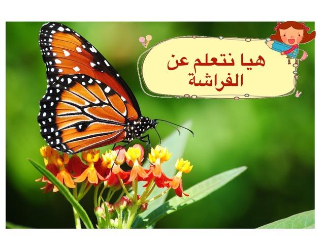 Butterfly  by Haneen Joul Turki