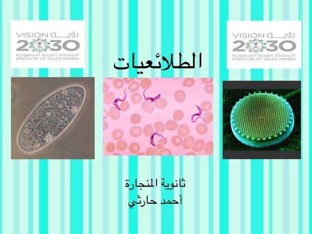 الطلائعيات by احمد كريري