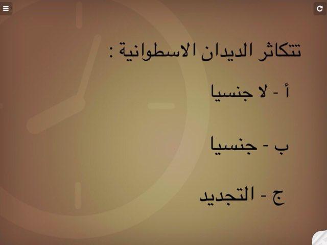 الديدان الاسطوانية by Hanouf Aloufi