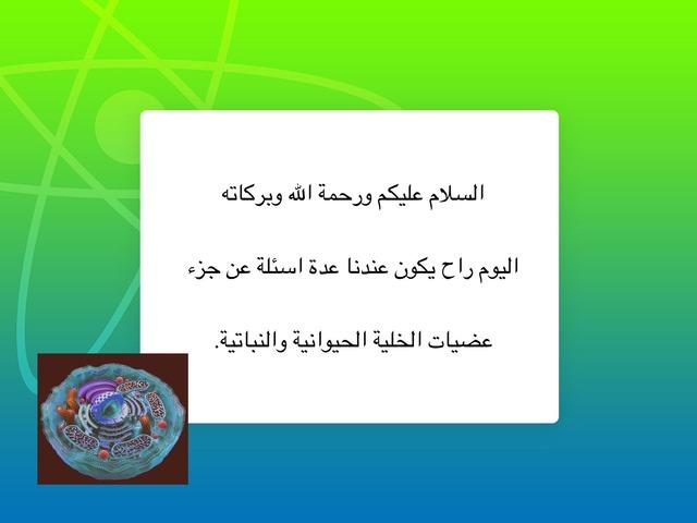 عضيات الخلايا ماريه الثنيان by imaria thu