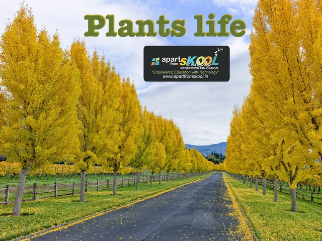 Plants Life For Kids  by TinyTap creator