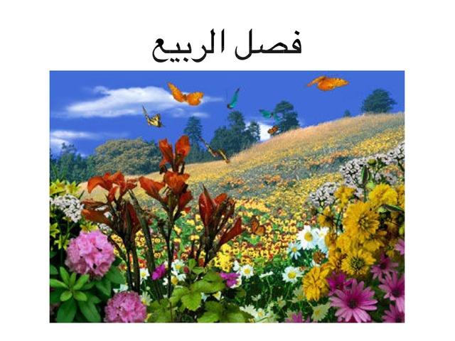 فصل الربيع (مدرسة الجنان للتربيه الخاصة كفر قاسم) by חדיגה עאמר