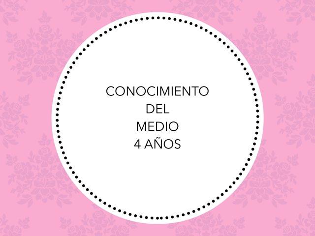 Cono by Mayte Jerez