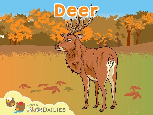 Deer by Kids Dailies