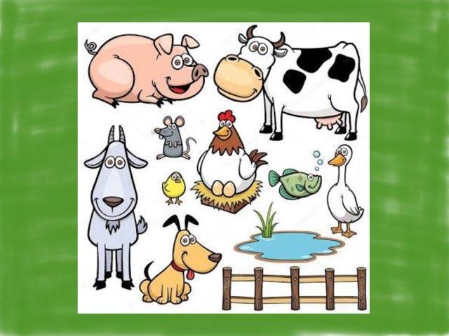 农场动物 by Suwen He