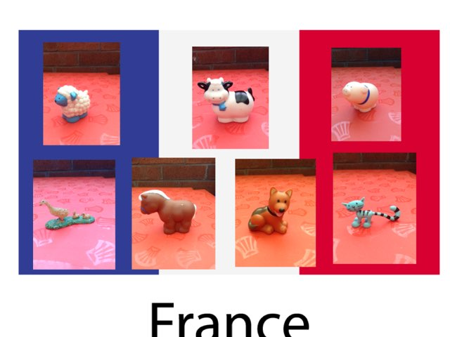 Animals In French by Margaret Lonsdale