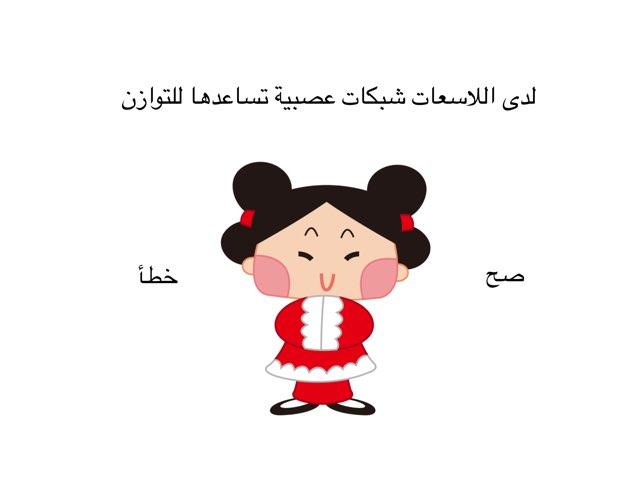 اللاسعات  by Shaimaa Mohammed