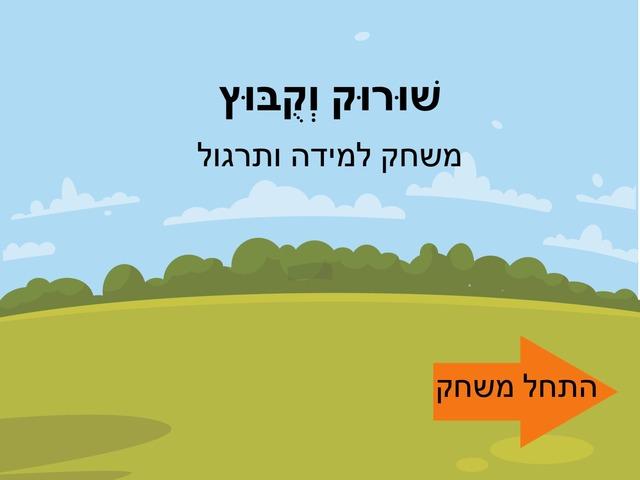 שורוק קובוץ by אילנה כהן