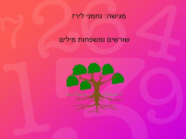 שורשים ומשפחות מילים by לירז אסרף
