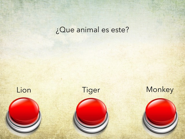 Animals Final by Hugo Román