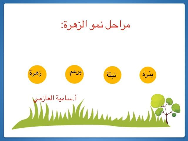 هذه اللعبه تحتوي على مراحل الزهره by ساميه العازمي