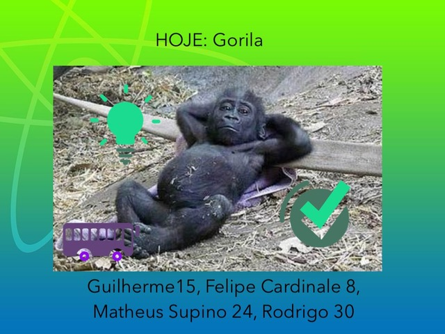 TRABALHO MAMÍFEROS- Gorila 7A  by Guilherme Silva