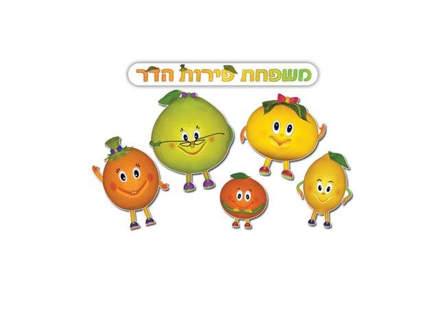 משפחת פירות הדר by Lironsimony Simony