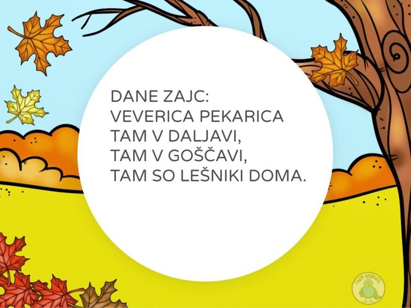 DANE ZAJC: VEVERICA PEKARICA by Simona Mihalic