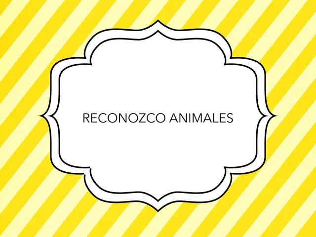 RECONOZCO ANIMALES by LAURA PARDO