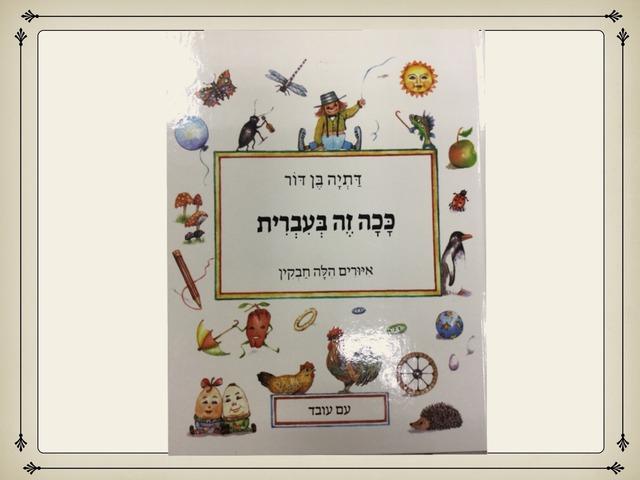 ככה זה בעברית מילים אחיות by אוריה חן