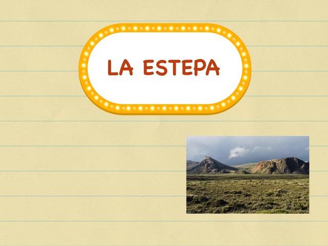 La Estepa  by Mariola Medina