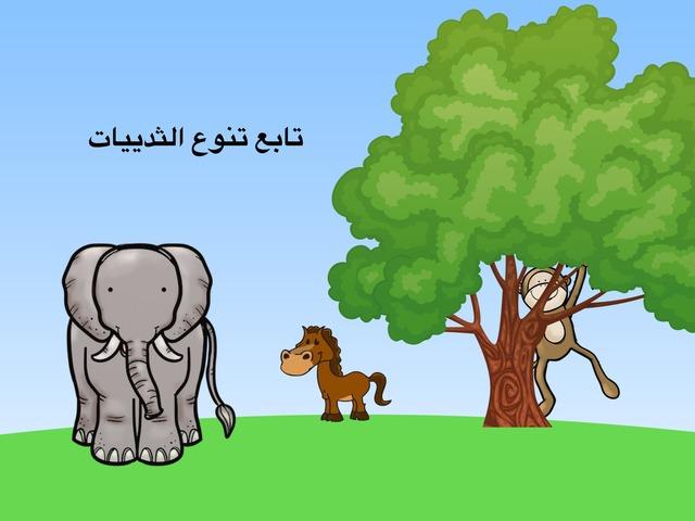 تابع تنوع الثدييات by نورة أحمد