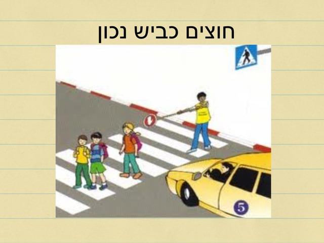 חוצים כביש נכון by Adi Ne'eman