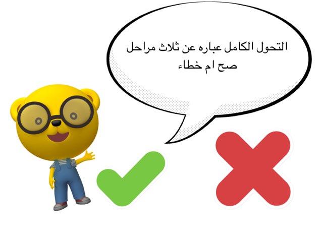 التكاثر خامس by Nona ff