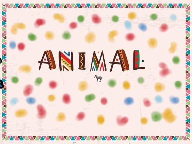 Animal by Gabi Kohn