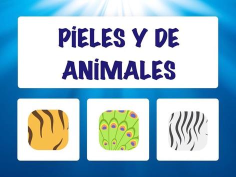 Pieles Y De Animales by Hadi  Oyna