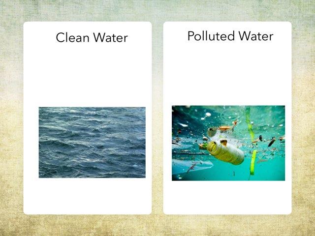 Environmental Issues by Jillian Tomlinson