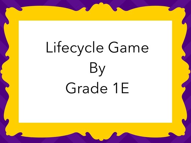Lifecycle Game By 1E by Carmel Year 1
