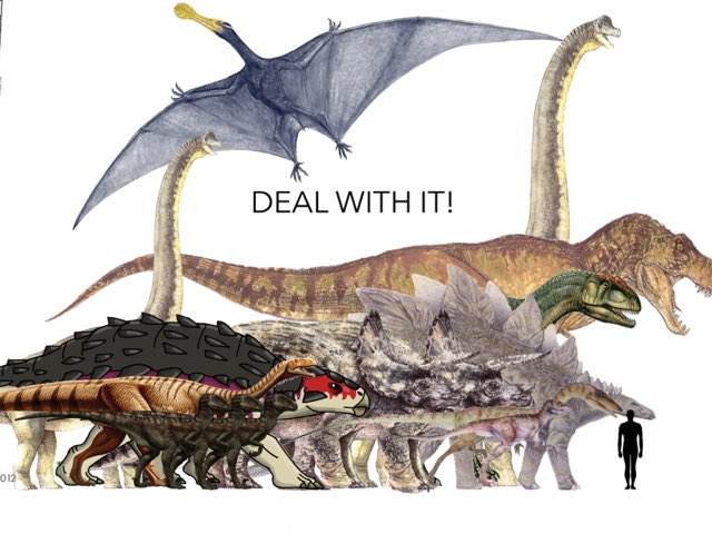 DEAL WITH IT! by George awrahim