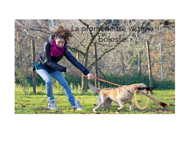 La Promeneuses Victime Bolosse  by Aubin