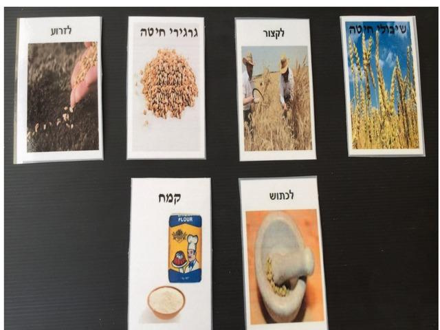 לוח תקשורת מן החיטה אל הלחם by לאורה אסטריק