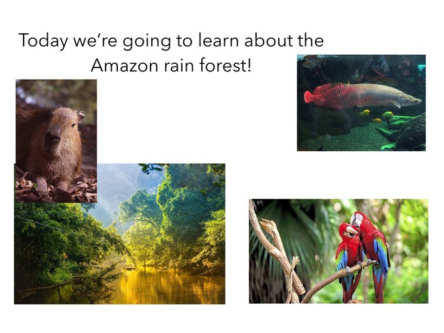 Learn All About The Amazon  by TinyTap creator