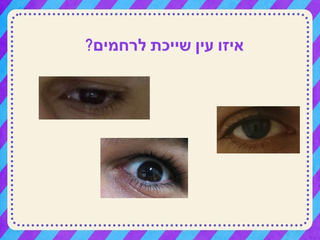 ממחלת by שובל כהן (סז)