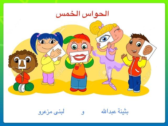 الحواس by Lubna Meziro