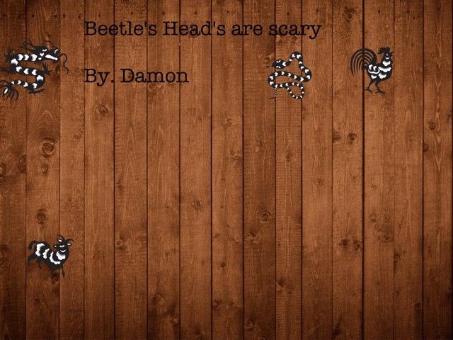 Damon's Beetle Project by Vv Henneberg
