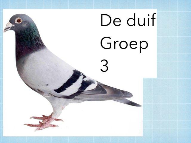 De duif by Wieke Jasper