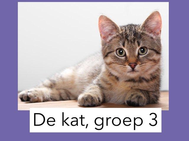 De kat, groep 3 by Wieke Jasper