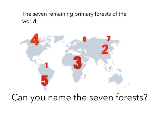 Deforestation 2 by Roberto Laemmle