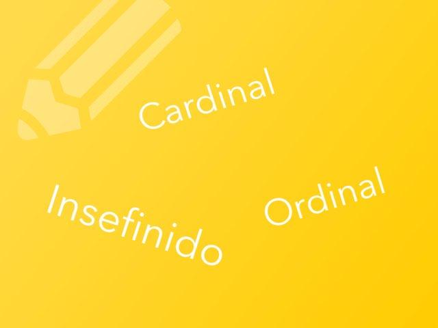Determinantes numerales by Llucia Bergas Garcia