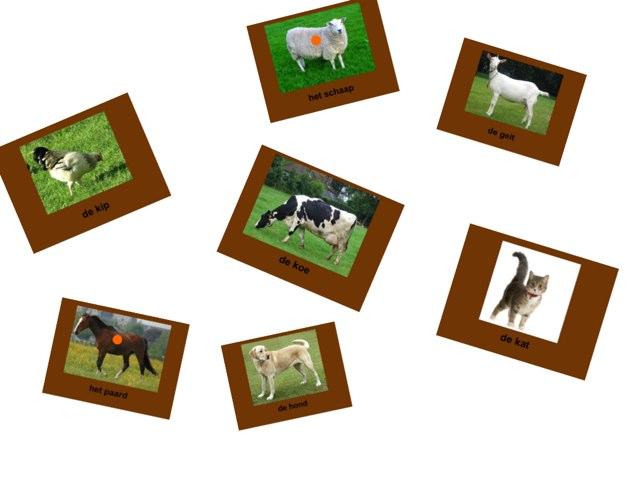 Dieren Herkennen by Geja van der Nagel