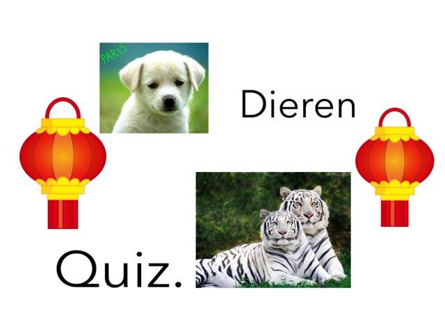 Dieren Quiz by Lona Van klaps