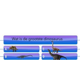 Dieren Quiz by Joost snijder