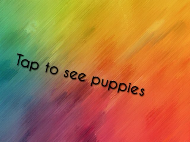 Different Puppies by Katelynn Reay
