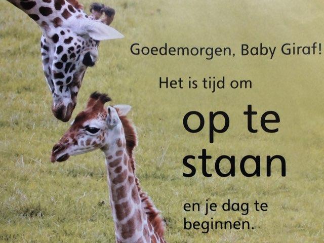 Digitaal Prentenboek: Baby Dieren, De Giraf by Ilse Brendel