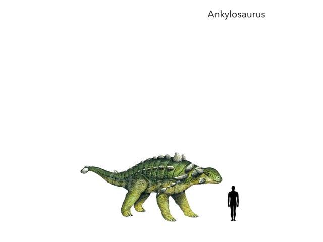 Dino Zone by George awrahim
