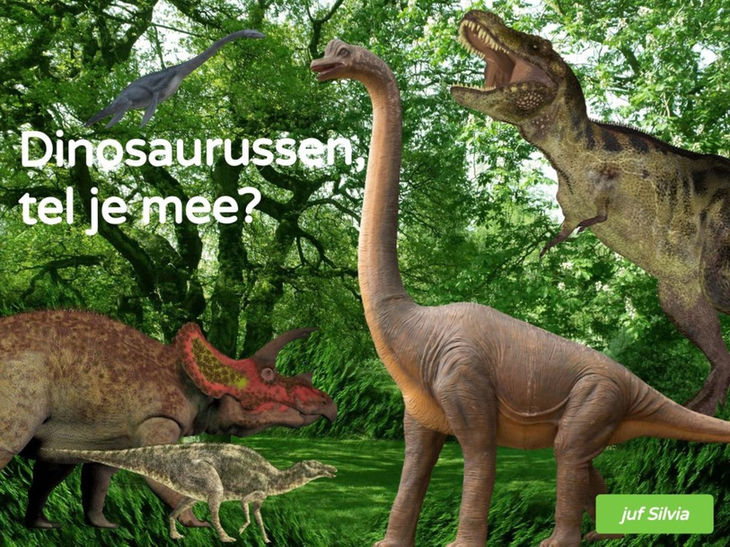 Dino's rangtelwoorden en begrippen by Silvia Broekmans