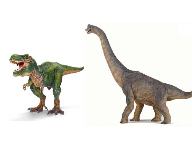 Dinosaur Comparing by Kellie Fagan