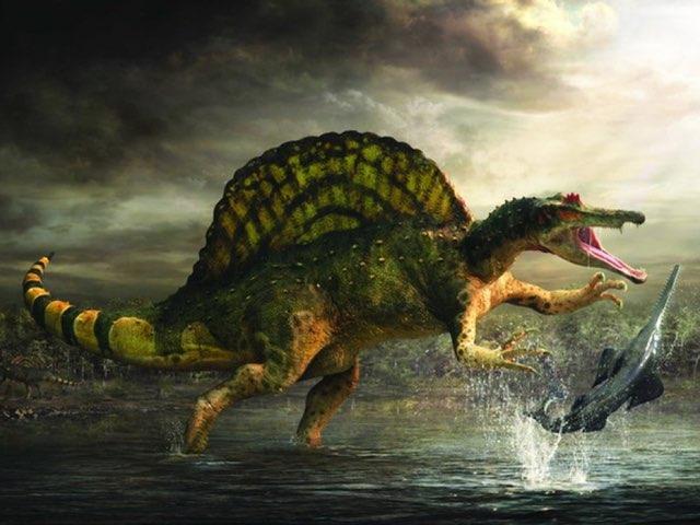 Dinosaur Surprise Eggs by George awrahim