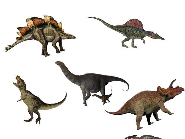 Dinosaur  by Melissa Vanacore