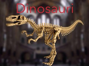 Dinosauri by Simone De Maglie